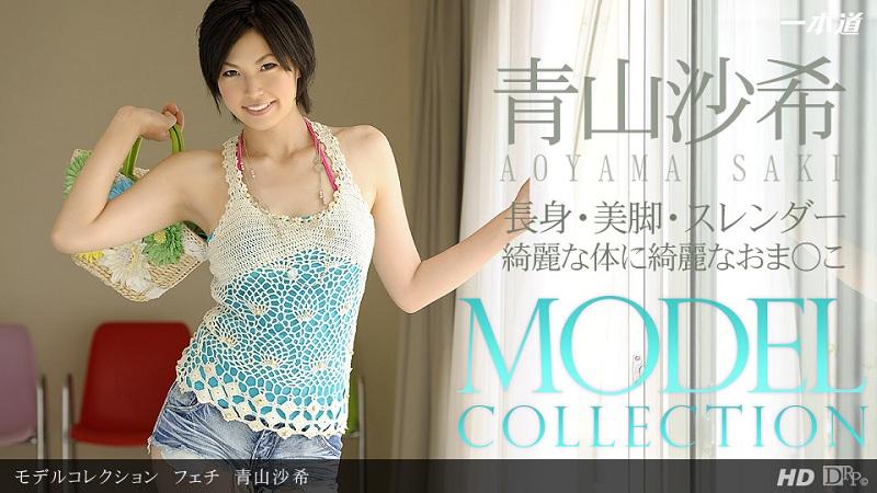1Pondo-081413_001 Saki Aoyama - 720HD