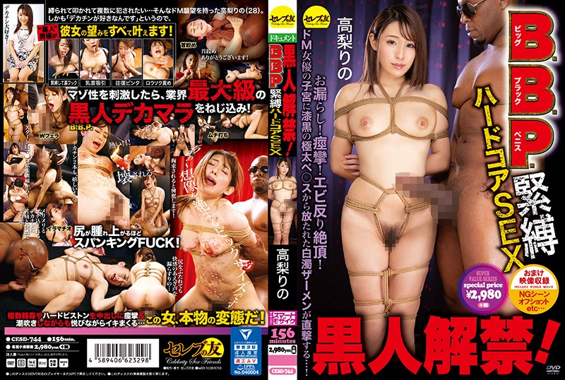 CESD-744 Takanashi Rino BDSM Hardcore Black - 1080HD