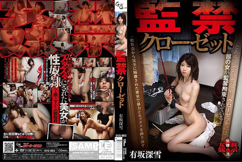GVG-983 Arisaka Miyuki Confinement Closet - 1080HD