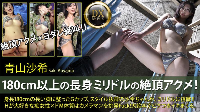 HEYZO-0158 Saki Aoyama - 720HD